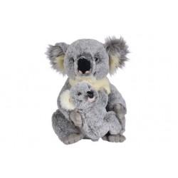 Koala avec son bébé, 28cm