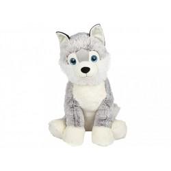 Husky, 71cm
