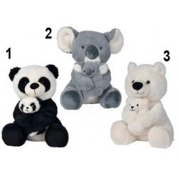 Panda, Koala, Ours polaire...